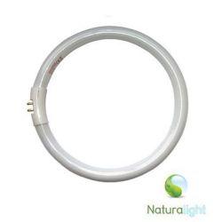 Świetlówka okrągła Daylight naturalight 28W DN0003
