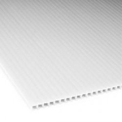 Płyta PP kanalikowa 100x70 biała