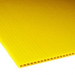 Płyta PP kanalikowa 100x70 żółta