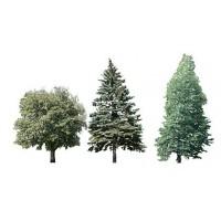 modele drzew i krzewów